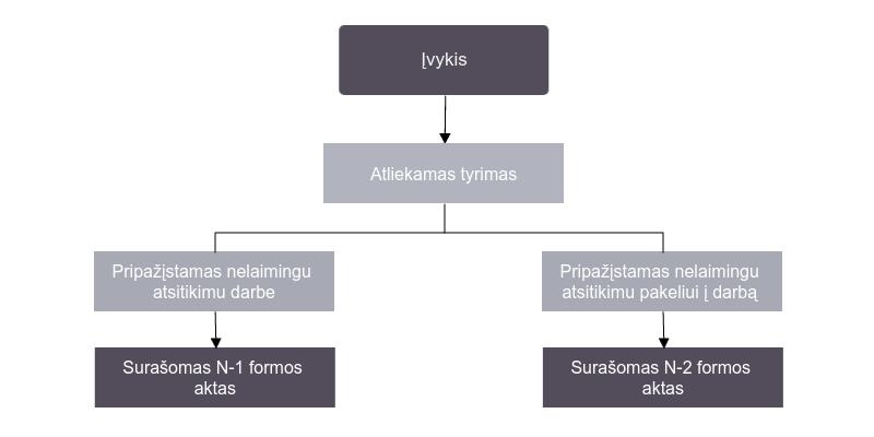 Įvykio tyrimas (N-1 ir N2 formos aktai)